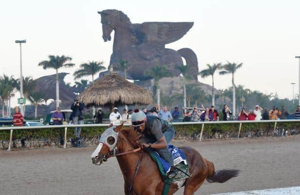 The Pegasus World Cup is …