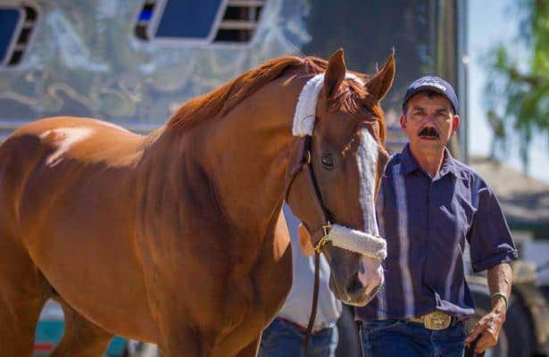 Flashback: The 5 greatest Santa Anita Derby winners