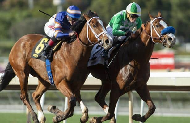 'Humiliated' by vet scratch, owner sues Santa Anita Park