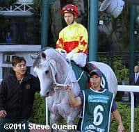 /horse/California Memory