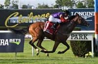 Call To Mind wins 2018 Belmont Gold Cup