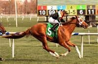Caribou Club wins 2018 Henry S. Clark Stakes