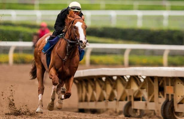 Catalina Cruiser training up to second Breeders' Cup try