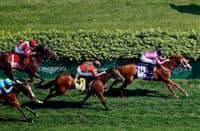 LOUISVILLE, KY - MAY 06: Catch a Glimpse #10, ridden by Florent Geroux, wins the Edgewood Stakes on May 6, 2016 in Louisville, Kentucky. (Photo by Jon Durr/Eclipse Sportswire/Getty Images)