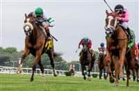 Catch a Glimpse_Time and Motion_Belmont Oaks 2016_615x400