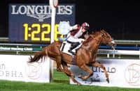 Championship (Ahmad bin Hamrash -Colm O'Donoghue) winner of the Group 2 Al Fahidi Fort leads the charge in Thursday's Meydan feature Zabeel Mile