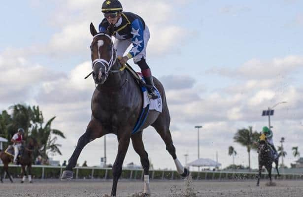 Analysis: Who's poised to upset in the Mucho Macho Man Stakes?