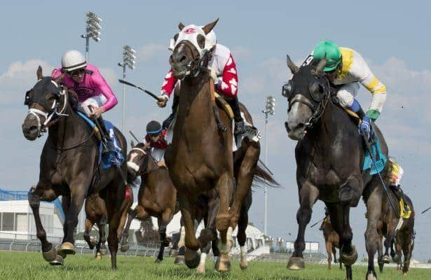 Channel Maker edges Final Copy in Breeders' Stakes