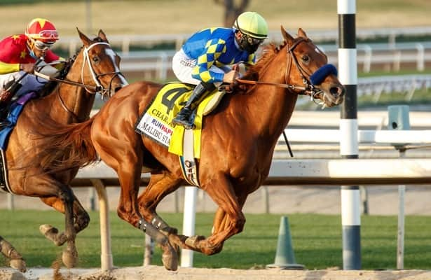 Shifman: Charlatan is No. 1 in NTRA poll after Saudi Cup