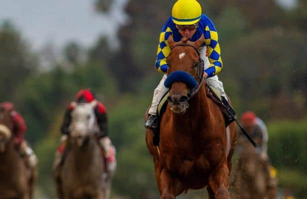 Analysis: Charlatan looks like special sort from Baffert's top trio