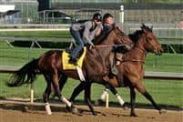 Chocolate Candy works out at Churchill Downs before the Kentucky Derby