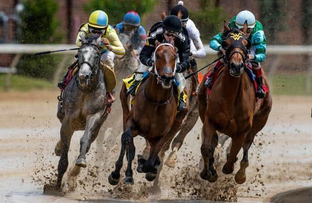 Derby Future Wager Sires: Meet the top progeny