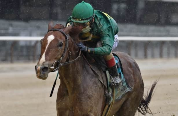 McGaughey unconcerned with wide draw for Code of Honor