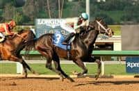 Conquest Two Step, winner of the 2015 Palos Verdes