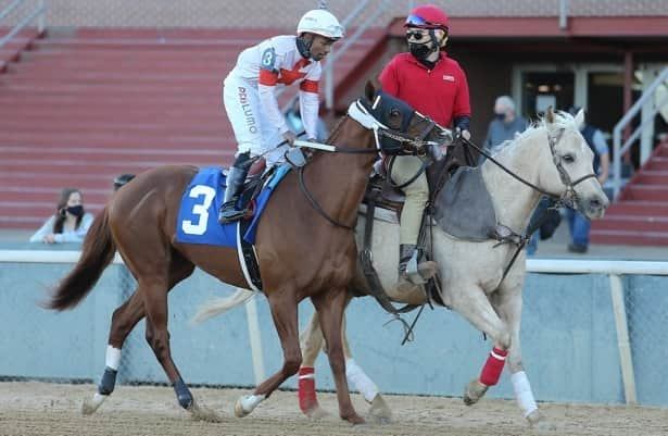 Derby pedigrees: Cowan taking Dubai route to Kentucky