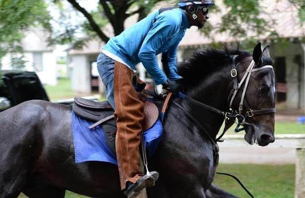 Zenyatta son Cozmic One retires, to join Retired Racehorse Project