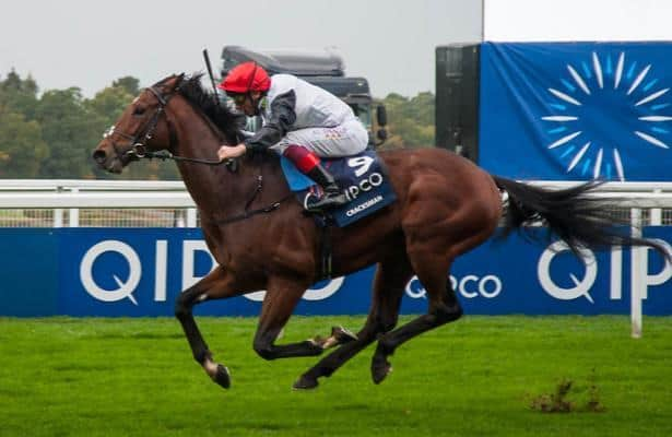 Champion stakes ascot 2021 betting sites betting closed score prediction tomorrow