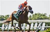 ELMONT, NY - JUNE 10: Da Big Hoss #7 (orange cap), ridden by Florent Geroux wins the Belmont Gold Cup Invitational on Belmont Stakes Festival Friday at Belmont Park on June 10, 2016 in Elmont, New York. (Photo by Scott Serio/Eclipse Sportswire/Getty Images)