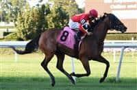 Daring Duchess wins at BEL (10-5-16)
