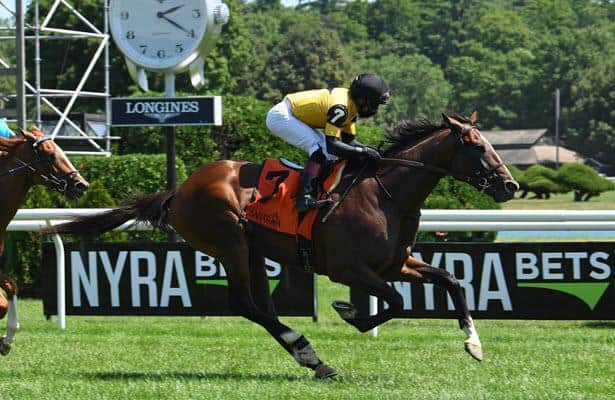 Decorated Invader looks to regain winning form in Sunday's Hill Prince