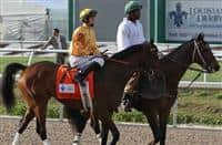 Departing ridden by Brian Hernandez, Jr. finishes third in The 100th Running of The Louisiana Derby Stakes at Fair Grounds Race Course in New Orleans, Louisiana on March 30, 2013.