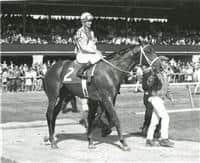 Winning the Blue Grass (1967)