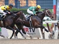 Dr. W wins Billy Redcoat Stakes at Aqueduct.