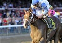 Dublin captures the 2009 Hopeful at Saratoga for trainer D. Wayne Lukas and jockey Jamie Theriot