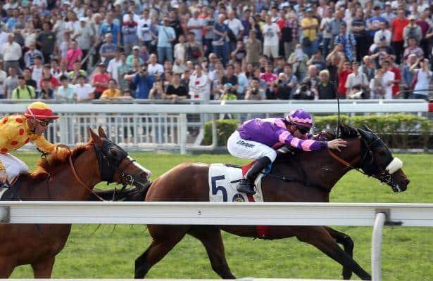 Dundonnell, Fabulous One chase Dubai success on Super Saturday