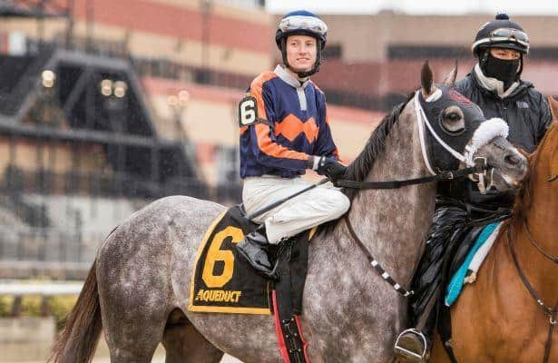 2017 Kentucky Derby: El Areeb Pedigree Profile