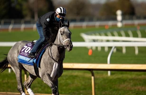 First look: Three Kentucky Derby preps lead weekend stakes