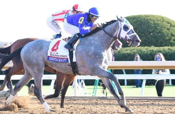 Cox: 2021 Travers now primary goal for Essential Quality