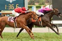 Fanticola wins 2015 Royal Heroine
