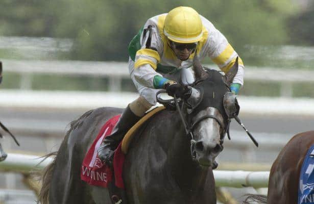 Field coming into focus for Breeders' Stakes
