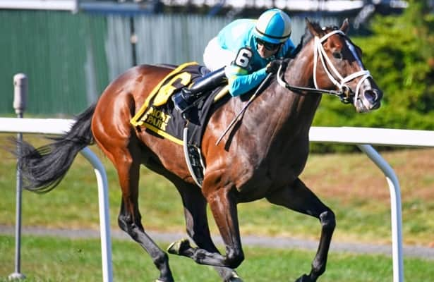 Division Rankings: Can Fire At Will be a Ky. Derby contender?