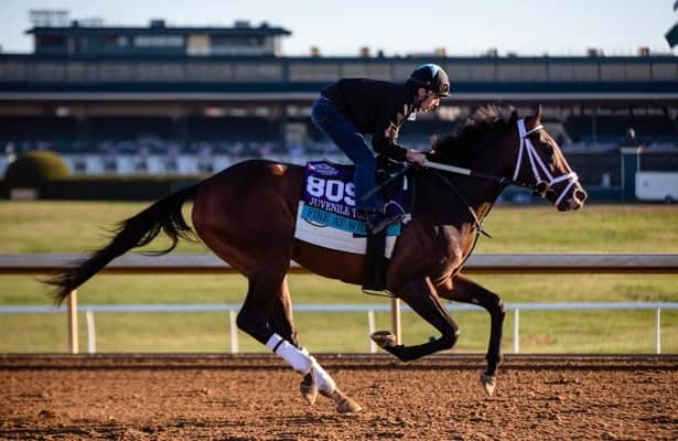Ky. Derby or turf for Fountain of Youth-bound Fire at Will?