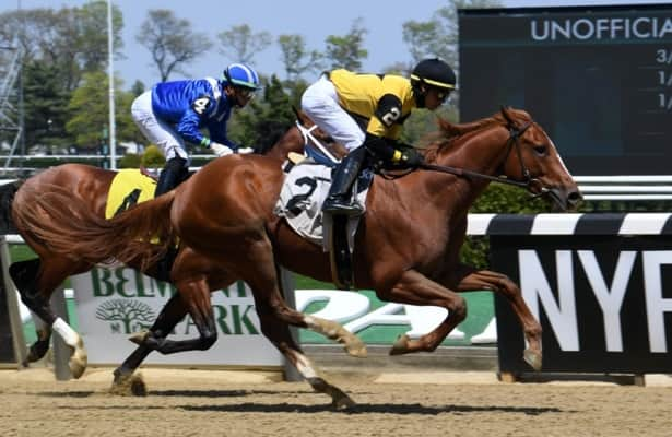 Horses to Watch: An impressive 8 to keep your eye on