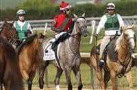 July 12, 2014: Delaware Handicap contender Flashy American, Alex Cintron up, takes part in the post parade before the race. Belle Gallantey, Jose Ortiz up, wins the Grade I Delaware Handicap at Delaware Park in Stanton Delaware. Trainer is Rudy Rodriguez; Owners are Michael Dubb, Bethlehem Stabes LLC and Gary Aisquith ©Joan Fairman Kanes/ESW/CSM