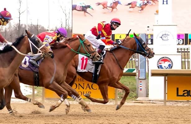 Apprentice John Hiraldo gets first victory in Laurel Park photo finish
