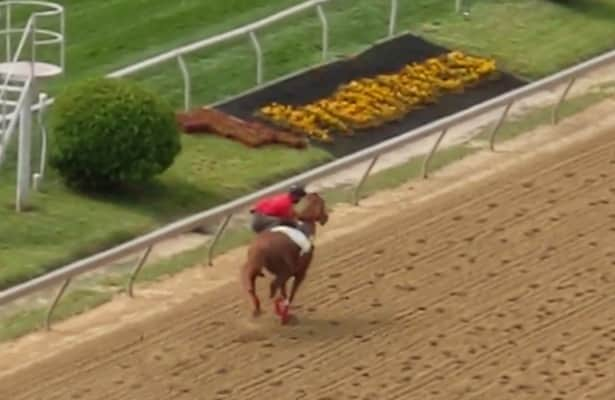 WATCH: Preakness horse loses his rider in workout