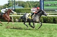 Fundamental wins at Saratoga (8-16-15)
