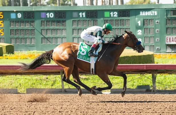 Gamine leads 11 horses on Monday's graded-stakes work tab