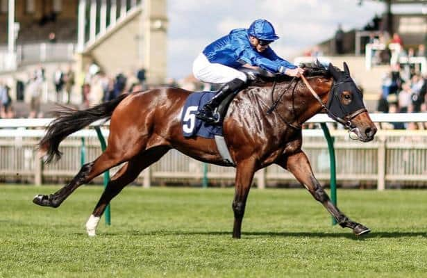 Updated: 20 Euro horses are Breeders' Cup candidates