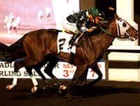 Go Greeley winning the 2013 Simcoe Stakes at Woodbine