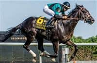Golden Brown wins 2018 Kent Stakes