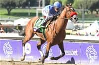 /horse/Goldencents