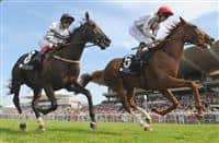 Sussex stakes betting websites how does point spread betting work from home