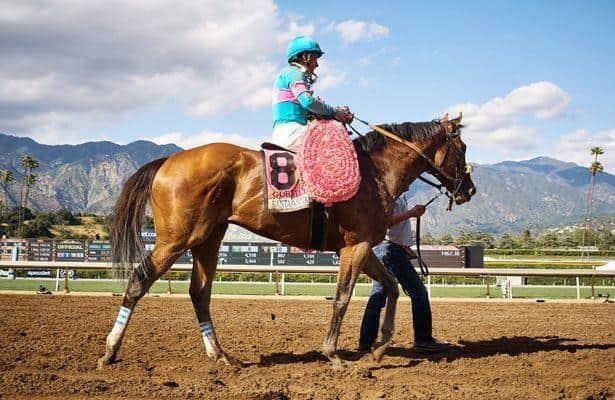Santa Anita Derby winner Gormley among seven entered in Shared Belief
