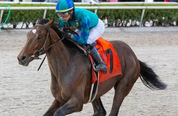 Kentucky Derby scouting: East Coast hopefuls pared to 14