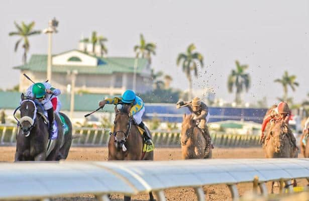 Gulfstream's Rainbow 6 guaranteed at $700,000 Saturday